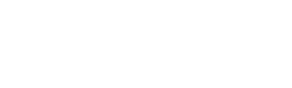 revolgy logo - white 190 3x